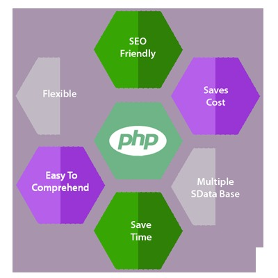Php Development Services in  New Area