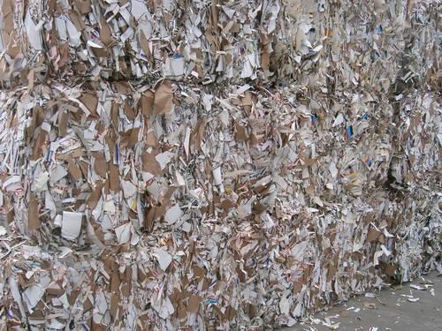 Waste Paper Scrap In Chennai Tamil Nadu Sakthivel