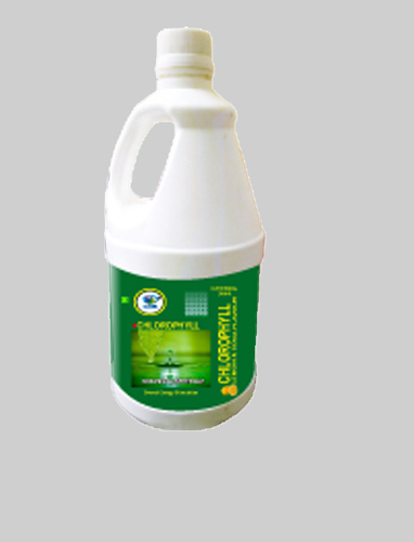 Herbal Chlorophyll Juice