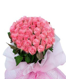 Hand Bunch Pink Roses