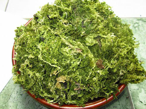 Organic Green Seaweed For Animal Feed