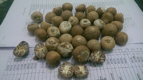 Vachras Areca Nut