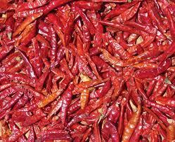 Lower Price Dried Red Chillies in   Anaj Market Yard