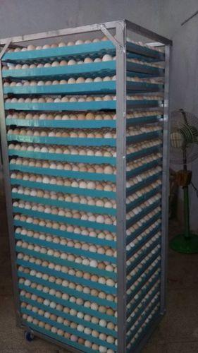 Egg Setting Trolly in  Hari Nagar