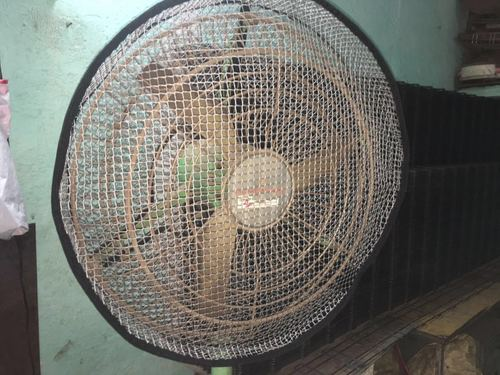 Durable Pedestal Fan : Fan safety cover in chennai tamil nadu wahr enterprises