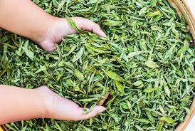 Stevia Dry Leaves For Sweetness