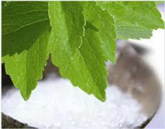Stevia Extract Rebaudioside in  Hadapsar