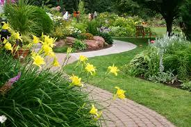 Garden Landscaping Services in  Chawni