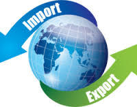 Export Import Credit Verification Services in  New Area