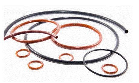 Encapsulated O Rings India