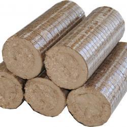Biomass Briquettes in  New Area