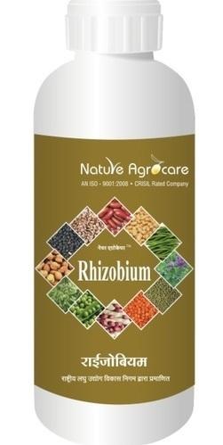 Rhizobium in  Dewas Naka
