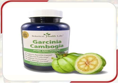 Garcinia Cambogia Extract 60% HCA in  Anna Nagar (East & West ) Avenue