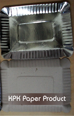 Rectangular shaped paper plates
