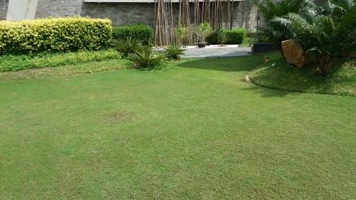 Landscaping Services in  Satellite