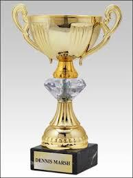 Diamond Sports Cup Trophy in  Niryat Nagar