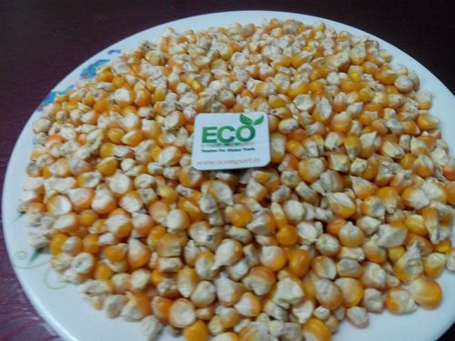 Poultry And Animal Feed Maize
