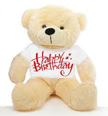 Massy Gift Teddy Bear
