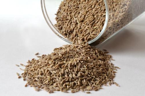 Premium Cumin Seeds in  Boranada