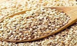 Natural Sesame Seeds  in  Navrangpura