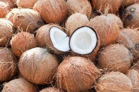 Coconut in  Vanagaram