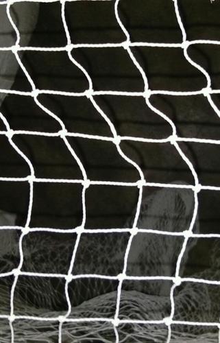 Anti Bird Net in  Delhi Road