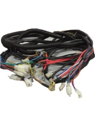 Wiring Harness For E Rickshaw