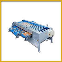 Potato Grading Machine in   P.O.-Toda