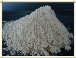 Hydrolysed Rice Protein