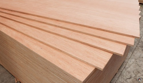 Commercial Plywood  in  Chinhat