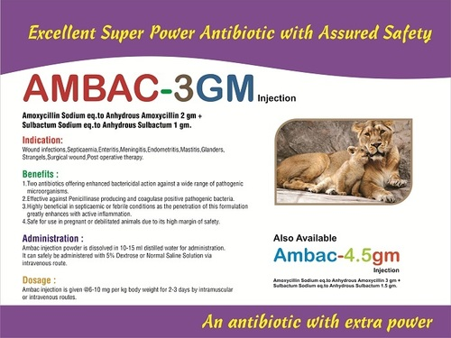 AMBAC-3 GM Veterinary Antibiotic Injections