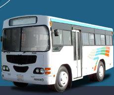Mini Luxury Buses
