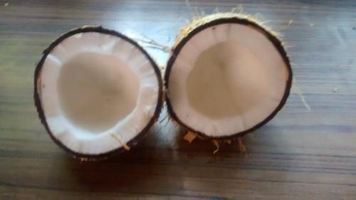 Natural Semi Husk Coconuts in  Vellakinar