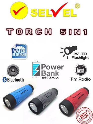 5 In 1 Torch Built With Speaker in  Hardhiyan Singh Road