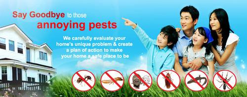 Indoor Pest Control Services