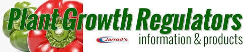 Plant Growth Regulator in   Dist Ferozepur