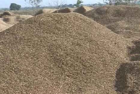 Groundnut Shell Powder in  Bodakdev