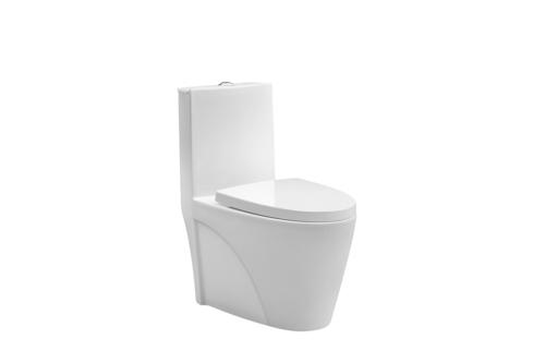 Carey One Piece Toilet