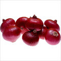 Fresh Red Onions in  S.G.Road