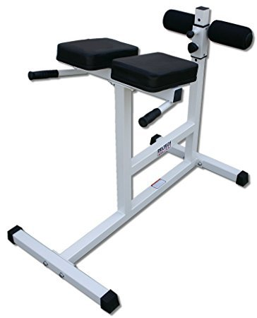 Hyperextension Bench in  Dadar (E)