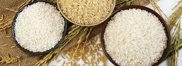 Organic Basmati Sella Rice