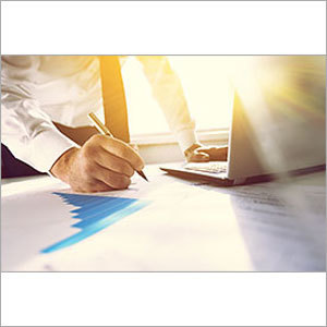 Business Consulting Service in  Makarba