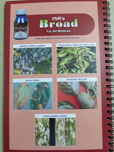 Pesticides For Mildews in  New Area