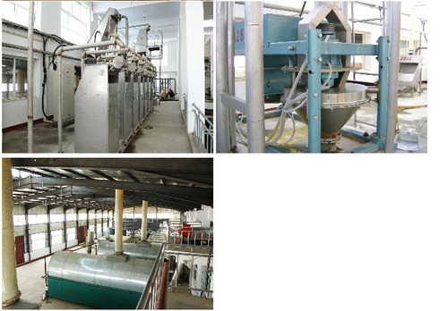 Casava Starch Equipment