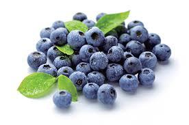 Quality Tested 25% Anthocyanidins Bilberry Extract in  Yamuna Vihar