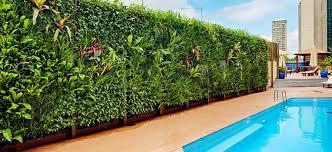 Vertical Gardening Services in  Kondapur