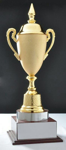 Cup Trophy in  Civil Line