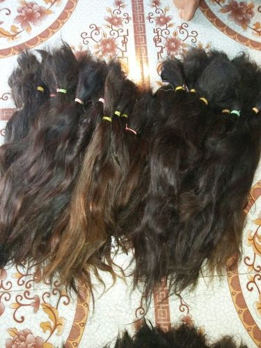 Remy Hair (Top Quality) in   Murshidabad