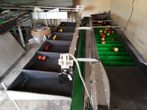 Apple Grading And Packaging Machines in   Sarsehri Road