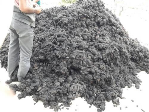 Best Qualiyt Guti Hair  in   Murshidabad
